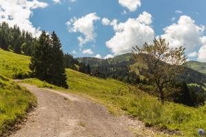 Irgendeine Alpe