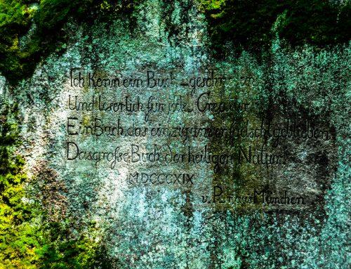 Burgstein und Haberstein – Zwei Gipfel erklommen