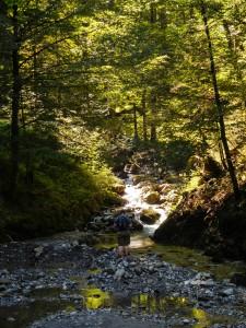 Robert Wasserfall-0378
