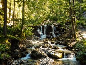 Wasserfall-0382