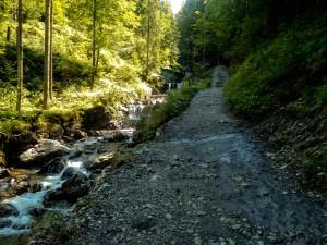 Weg Wasserfall-0391